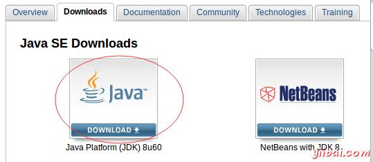 linux 安装 java
